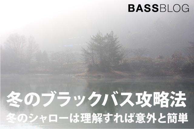 バス釣り「冬のシャロー」は理解すれば意外と簡単。シャロー攻略がデカバスGETのキー!