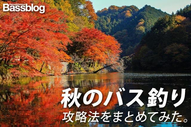 「秋のバス釣り」秋のブラックバスを釣るコツと攻略法まとめ。秋バス爆釣の秘訣!