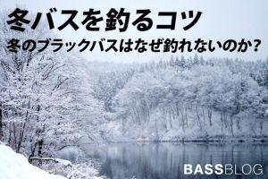 冬バスはなぜ釣れないのか?釣れない冬バスを釣るコツ!