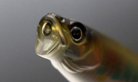 一誠「GCワカペン90」水面で不規則にもじる小魚のアクションを簡単に演出できるペンシルベイト!