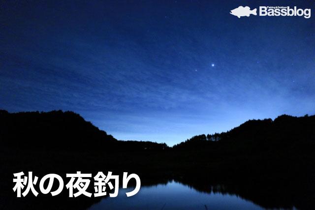秋の夜釣り