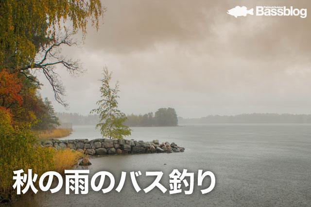 秋の雨でのバス釣り